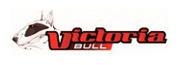 VICTORIA-BULL